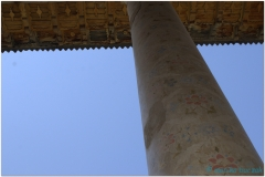 20140824 Shiraz 10