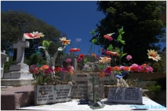 20151126 Valparaiso 00021