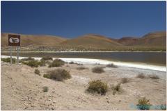 20151203 Atacama 4 00002