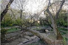 20190403-Bukareszt-66_DxO_DxO