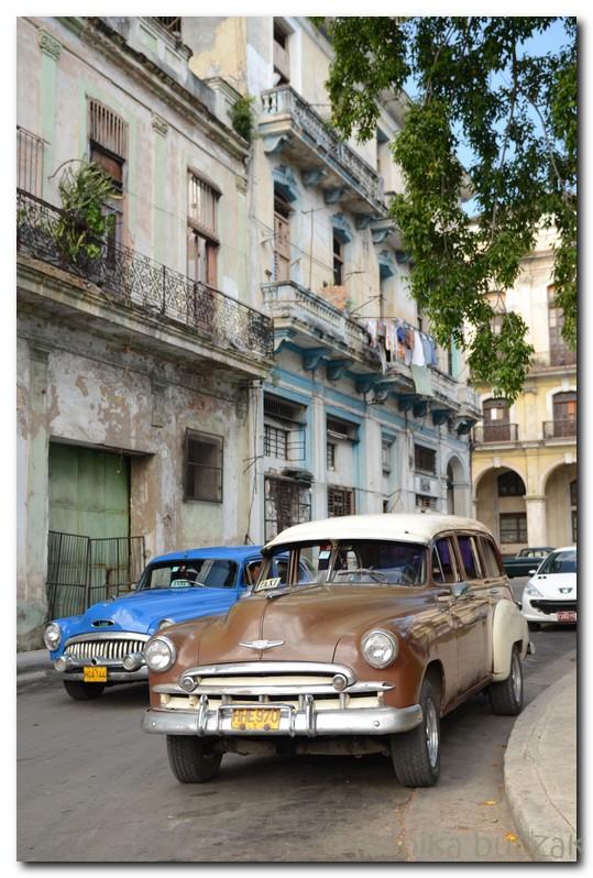 kuba-2011-1-15