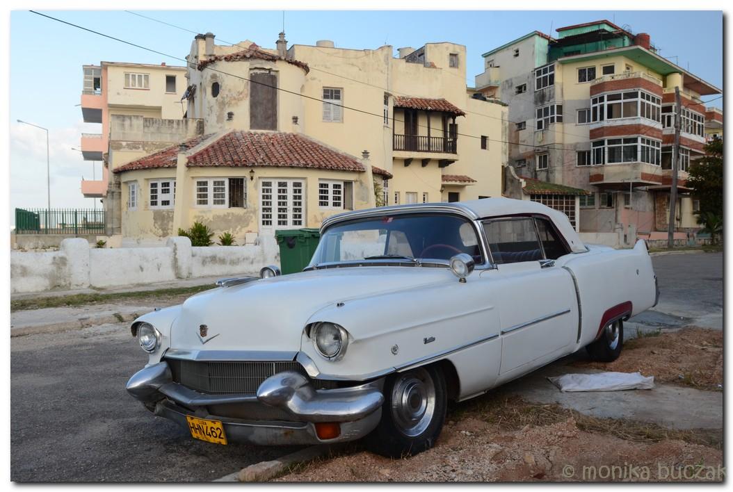 kuba-2011-1-50