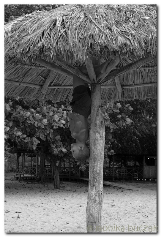 Kuba 2011 3 (37)
