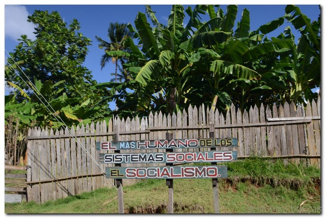 Kuba 2011 3 (49)