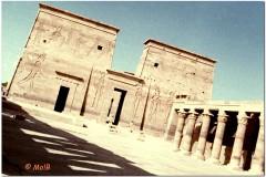 1991-3-Egipt-29