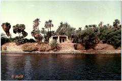 1991-3-Egipt-42