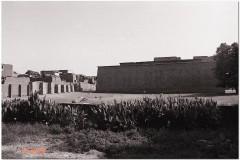 1991-3-Egipt-50