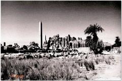 1991-3-Egipt-74