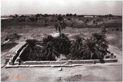 1991-3-Egipt-89