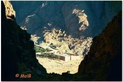 2003-Sharm-32