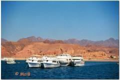 2003-Sharm-8