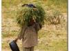 4 Axum-Yeha-Axum 20090918-20 (26)