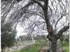 20110226-ateny-2-kerameikos-13