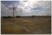 20140825 3 Persepolis 30