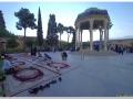 20140824 Shiraz 37