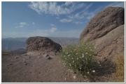 20140902 Alamut Valley&Castle 33