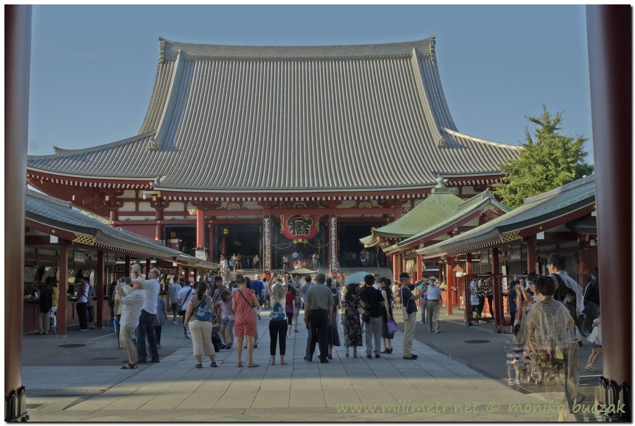 20120822-tokio-53_4_5_fused