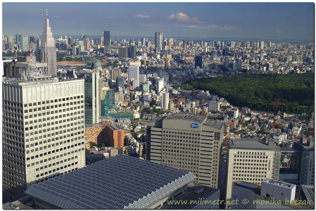 20120824-japonia-tokio-52