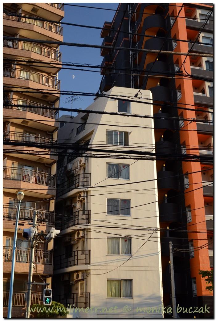 20120824-japonia-tokio-72