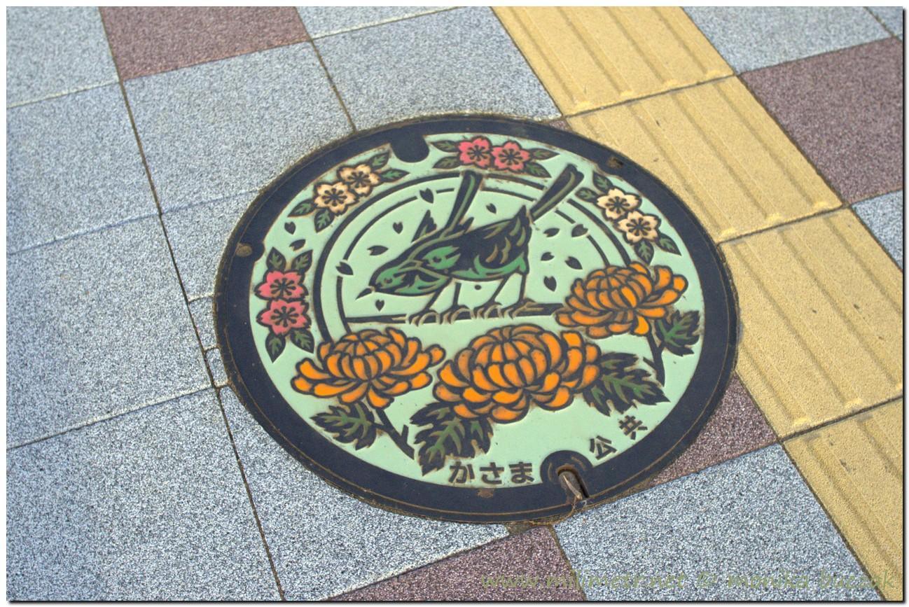 20120826-japonia-iwama-83