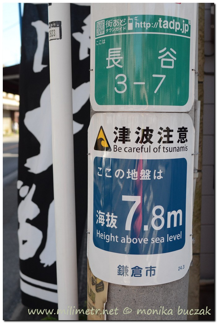 20120827-kamakura-62