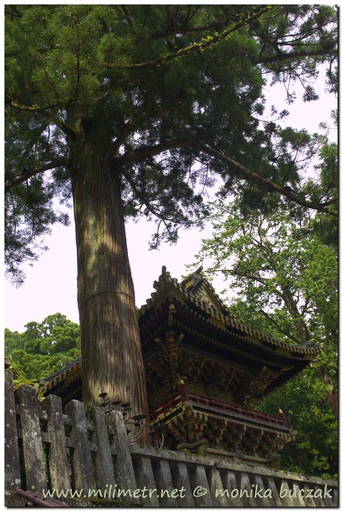 20120828-japonia-nikko-42