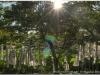 20120827-kamakura-122_3_4_tonemapped