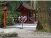 20120828-japonia-nikko-98
