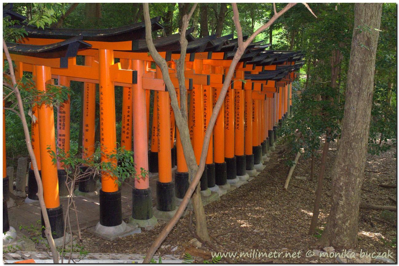 201200831-japonia-kioto-49