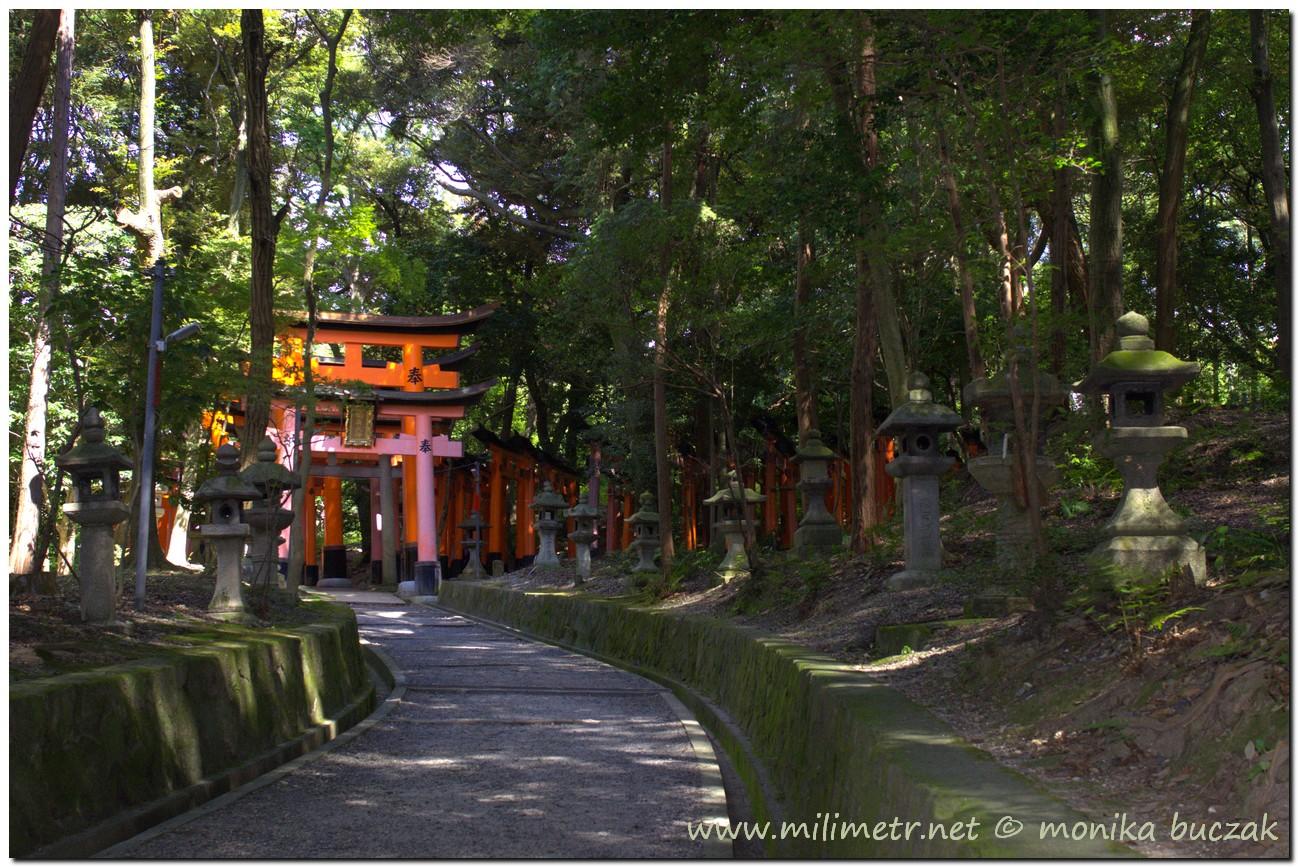 201200831-japonia-kioto-57