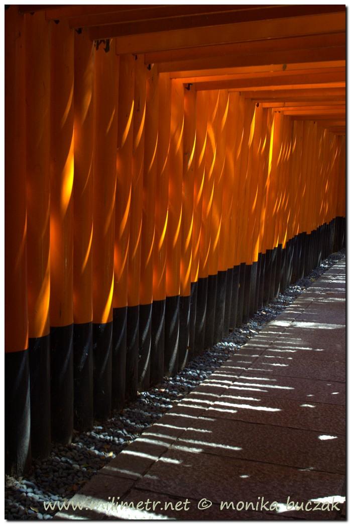 201200831-japonia-kioto-8