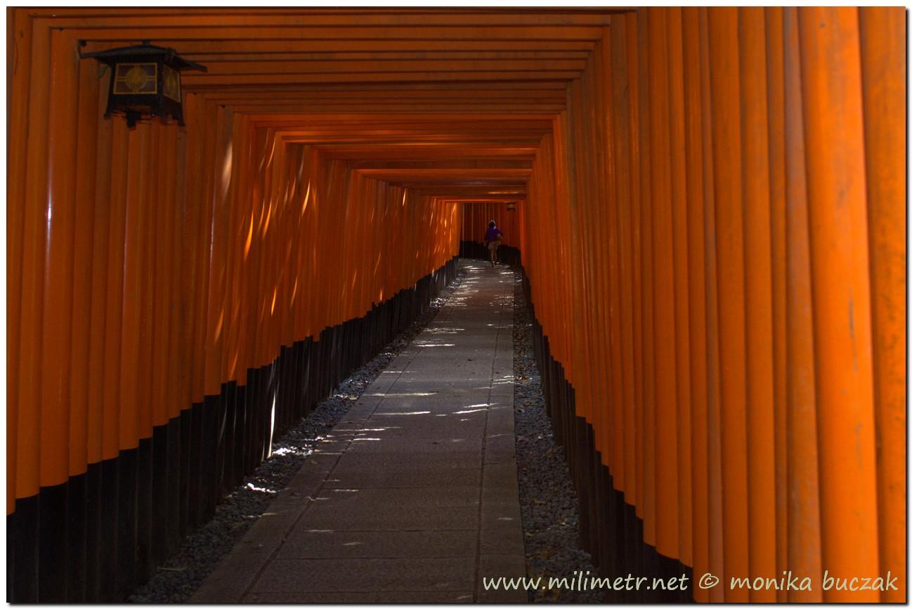 201200831-japonia-kioto-9