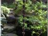 20120902-japonia-kanazawa-67