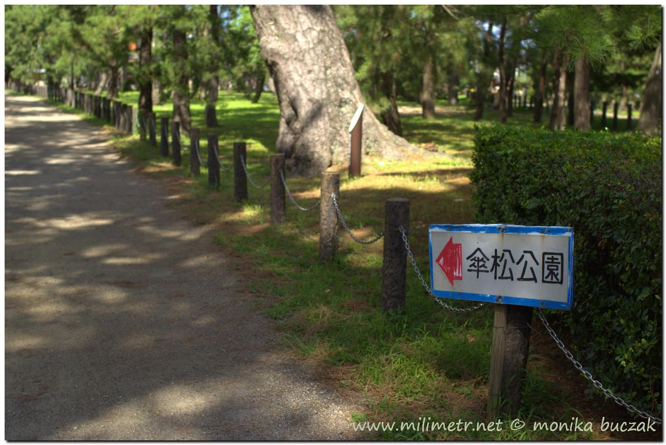 20120903-japonia-amanohashidate-33