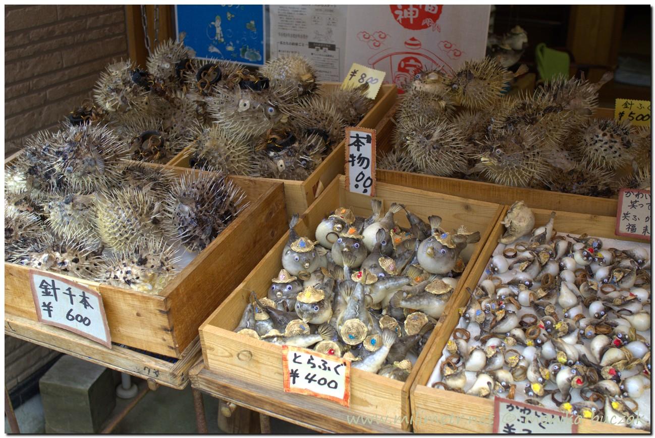 20120903-japonia-amanohashidate-73