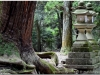 20120905-japonia-nara-104