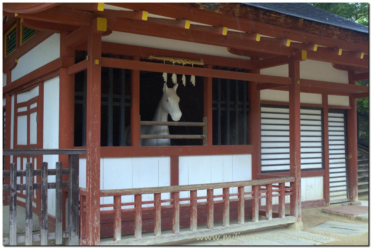 20120906-japonia-hiroshima-75
