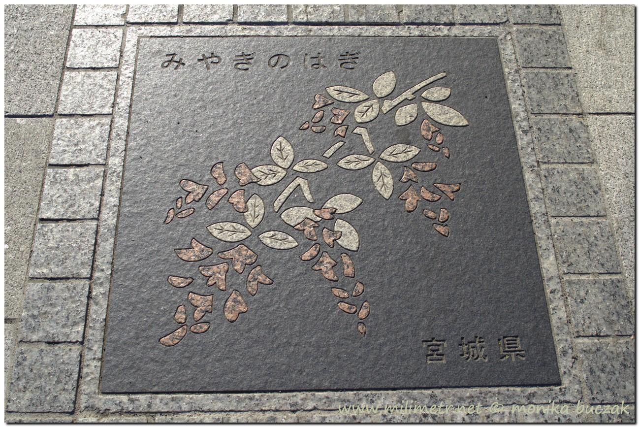20120823-japonia-tokio-69