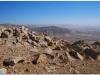 20101103-jordania-wadi-rum-4