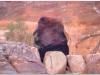 20101104-jordania-petra-70hdr