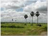 20081119-kambodza-phnom-penh-88b