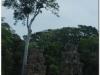 20081121-kambodza-siem-reap-196