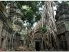 20081121-kambodza-siem-reap-277
