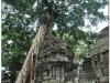 20081121-kambodza-siem-reap-279