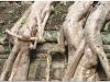 20081121-kambodza-siem-reap-281