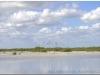 20111127-kuba-zapata-playa-larga-36