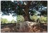 Laos 3 (9).JPG