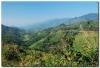 Laos 4 (6).JPG