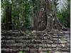 20130505-meksyk-palenque-43