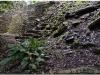 20130505-meksyk-palenque-45